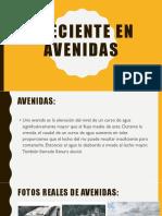 CRECIENTE EN AVENIDAS-EXPO (1).pptx