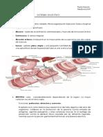 Sistema Digestivo Histo