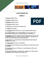 Los Evangelios Tomo II