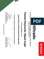 Constancia_Inspecciones y Observaciones de Seguridad_Passoni Reymundo