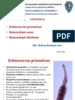 Hymenolepis, E. Granulosus