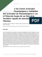 Expresión de Los Genes Activador Tisular de Plasminógeno e Inhibidor Del Activador de Plasminógeno I, En El Músculo Luego de Un Ejercicio Aeróbico Agudo de Intensidad Máxima