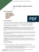 Guía Clínica de Patologías Estructurales Del Esófago_ Membranas y Anillos Esofágicos