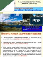CLASE2019-VIII-Cadenas Troficas y Ciclos Biogeoquimicos 4