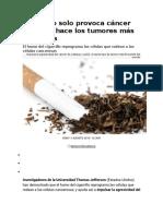 Fumar No Solo Provoca Cáncer Sino Que Hace Los Tumores Más Agresivos