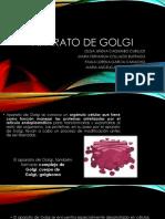 EXPOSICION BIOLOGIA.pptx