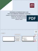 Evidencia 1.3.docx