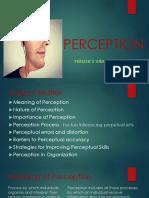Perception Final Plus