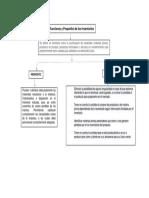 MAPA CONCEPTUAL PROPOSITO Y FUNCIONES DE UN INVENTARIO.docx