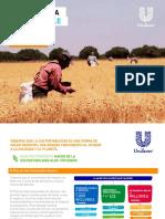 resumen_ sustentable.pdf