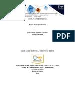 Fase 1 - Conceptualización _Luis Gabriel Martinez_Grupo74