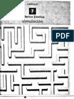 Toma de Decisiones Bonatti (Unidad 7 Simulacion)