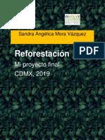 reforestacion1 (1)
