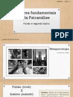 Pilares Fundamentais Da Psicanálise