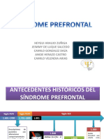 236198202-Sindrome-Prefrontal.pdf