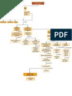 El Estado y su forma de organización