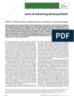 Article - Quantifying Impacts of Enhancing Photosynthesis on Crop Yield