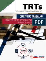 14746905-principios-fontes-diferencas-entre-relacao-de-trabalho-e-relacao-de-emprego.pdf