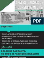 Presentacion Integralab Causas de Consulta2
