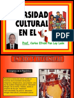 diversidadculturalsesin2-141120215243-conversion-gate02-convertido.pdf