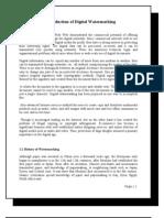 A Report on Digital Watermarking 2