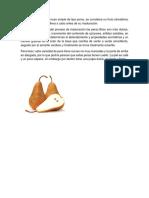 Composición quimica de la pera