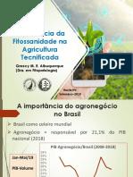 Importância Da Fitossanidade Na Agricultura Tecnificada