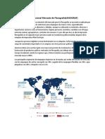 Investigacion Internacional Mercado de Flexografia