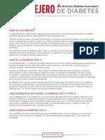 Type_1_Spanish.pdf