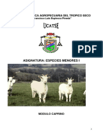 folleto cabras