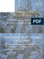 bacterias_sulfato_reductoras.pdf