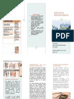 FOLLETO ESTADOS FINANCIEROS.pdf