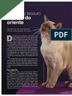 asset_P (2)