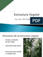 2. Presentacion Estructura Vegetal