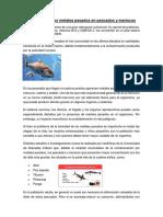 Contaminación Por Metales Pesados en Pescados y Mariscos