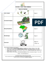Apostila - Intensivão 2019 - Prof XIMENES
