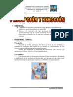 176055386-1er-Ensayo.doc