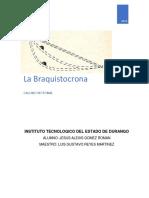 Braquistocrona