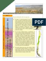 ficha_quillay_Metodo_de_propagacion.pdf