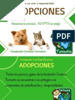 ADOPCIONES. A. 2019.. (2)