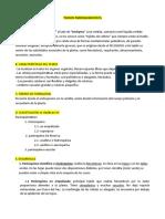 tejidos-parenquimaticosconductorres.docx