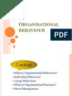 Organisational behaviour final.pptx