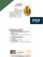 6 Lípidos, enzimas, ácidos nucleicos 20-1.pdf