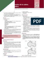artrosis cadera