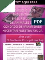 A El Rescate de Animales de Miami Dade Animal Services