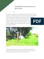 El Valor de Los Sistemas Agroforestales