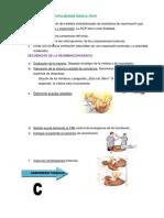 Reanimacion Cardiopulmonar Básica b