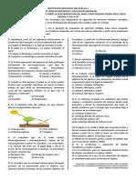 RECICLAJE DEL PAPEL ACTIVIDAD DE AULA