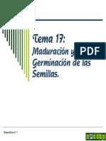 Tema 17 Maduración y Germinación de Semillas