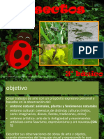 ppt insectos 3°
